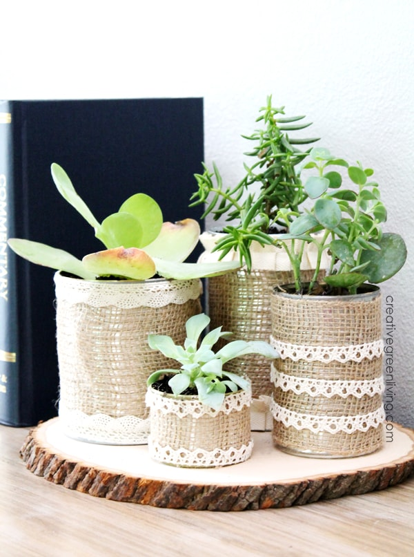 Rustic succulent planters made from recycled cans, burlap and lace