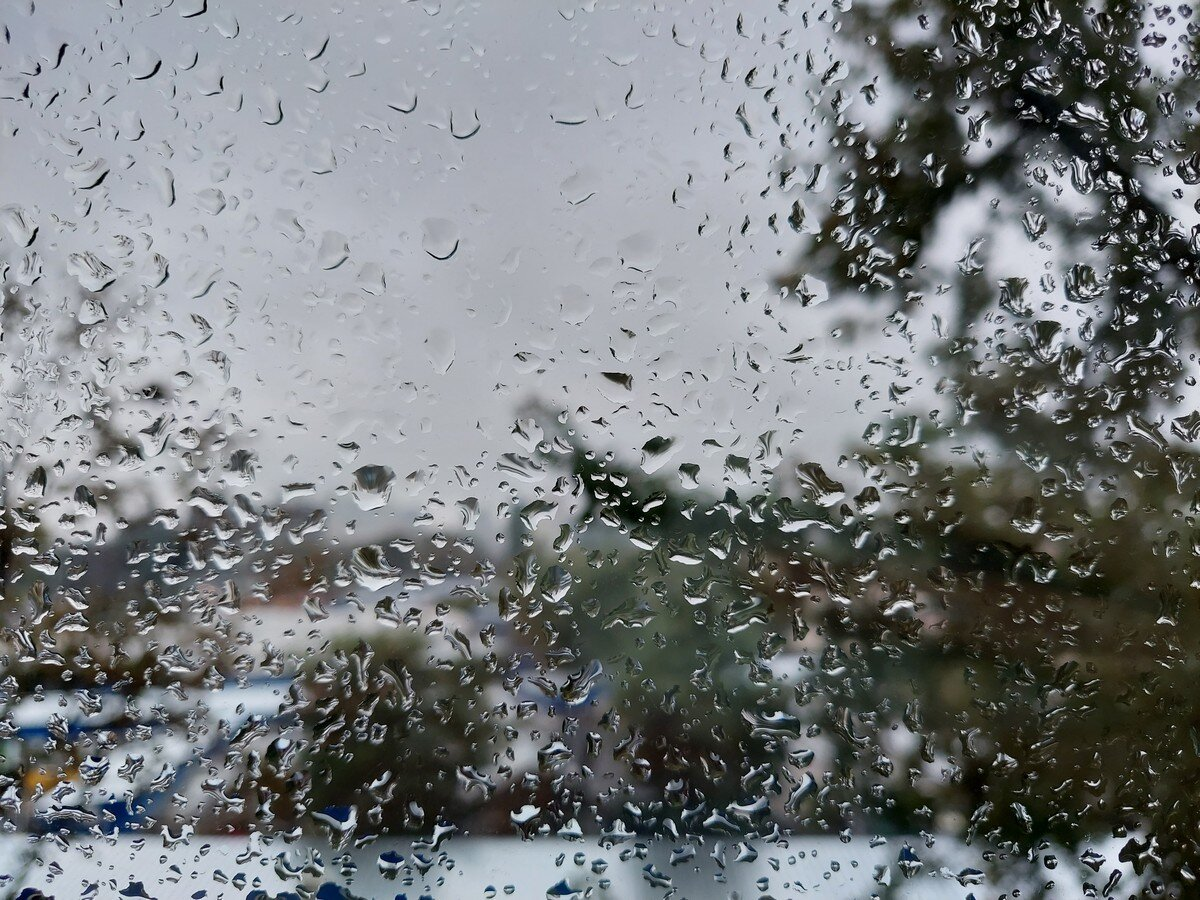 Foto Hasil Kamera Samsung Galaxy M51