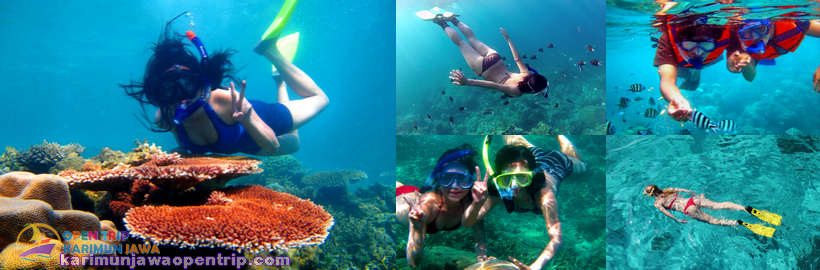 Karimunjawa Islands Travel Indonesia Lonely Planet