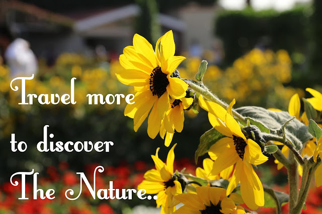 quotes on travel, quotes on nature