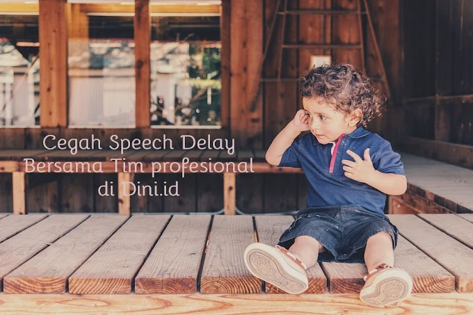 CEGAH SPEECH DELAY BERSAMA TIM PROFESIONAL DI DINI.ID