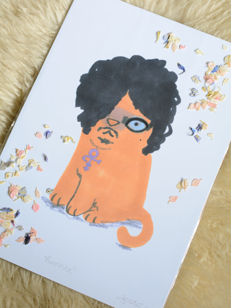 Jo Clark Prince Cat Print Not On The High Street