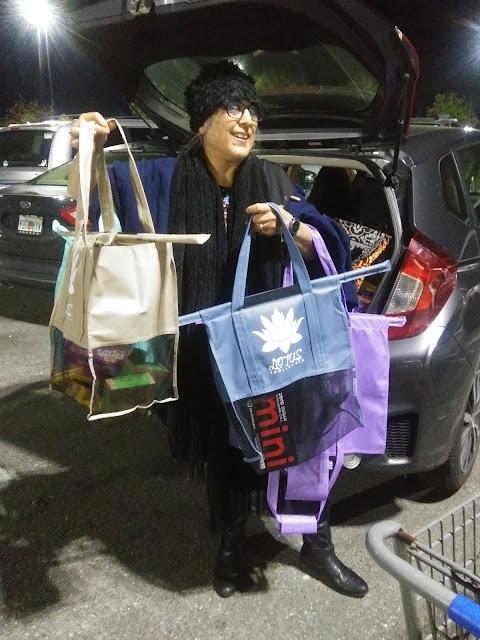 Lotus_Trolley_Bag_BBabushka_review_shopping