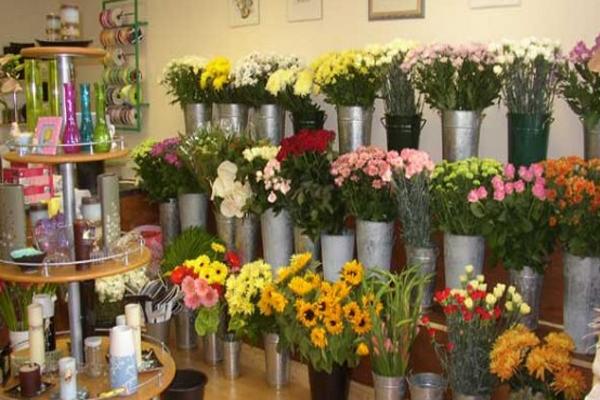 Tips Merawat Bunga Potong dan Bunga Kebun