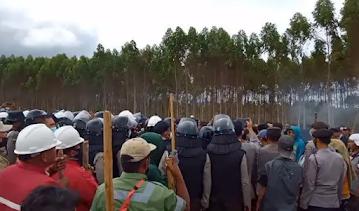 Kadishut Sumut: Areal Klaim 'OPS' di Desa Natumingka Bukan Tanah Adat