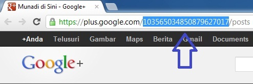 ID Profil Google+