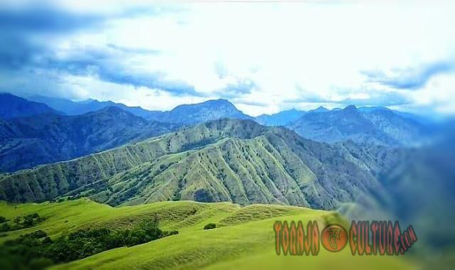 """""""Bukit Romantis Toraja. Destinasi Wisata Baru di Toraja"""""""
