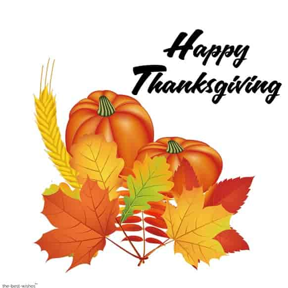 thanksgiving quotes for teachers