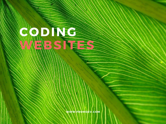 Best Websites to Learn Programming
