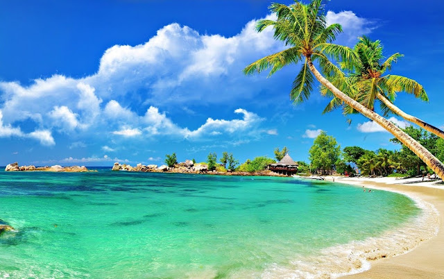 book discounted flight tickets to Goa