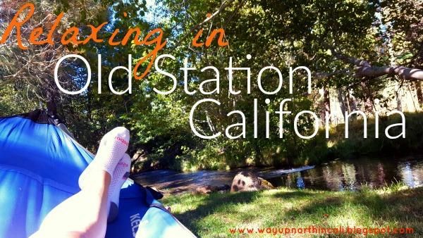Old Station, CA www.wayupnorthincali.blogspot.com