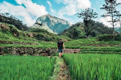 keindahan desa tempur