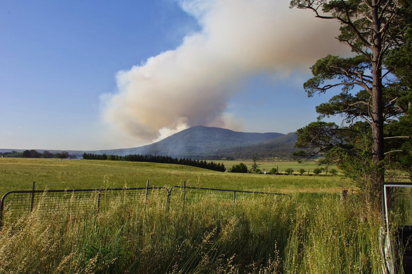 Burn off at Mount Macedon