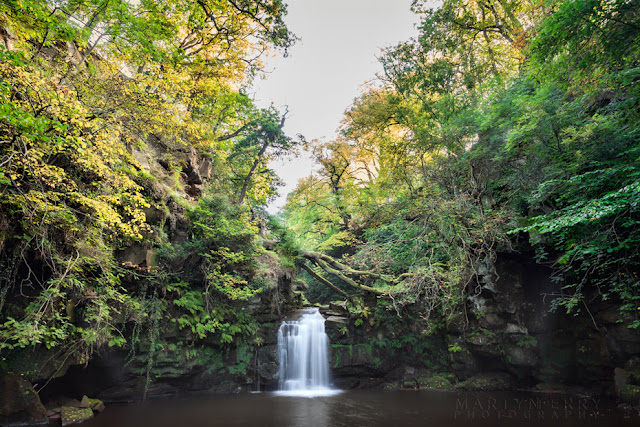 Thomason Foss waterfall in a deep valley at Beck Hole by Martyn Ferry Photography