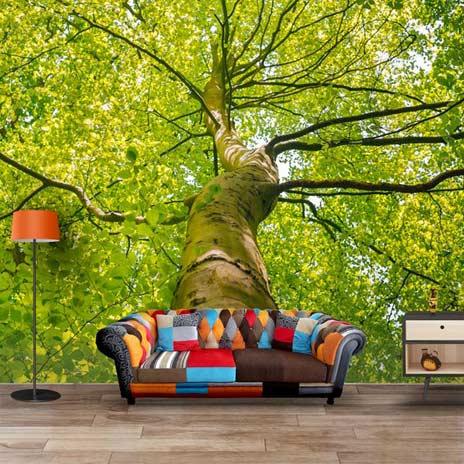 Fantasy 3d wallpaper designs for living room bedroom walls for 3d wallpaper for living room in india