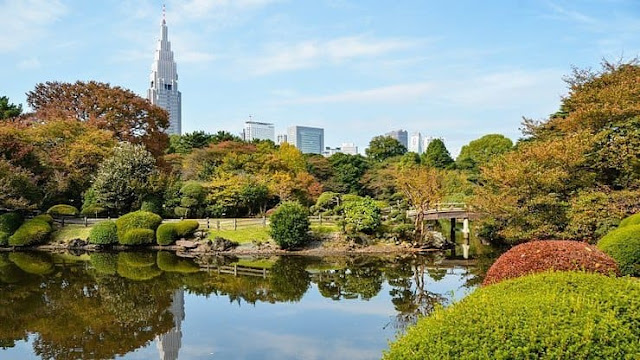 حدائق طوكيو,Shinjuku Gyoen