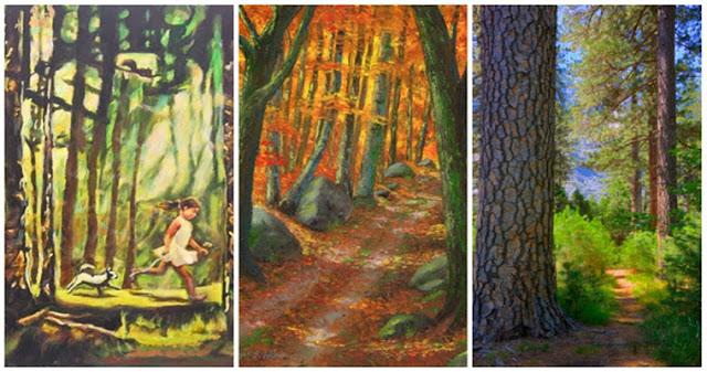 Тест: выберите лес и узнайте что-то новое о своей личности!