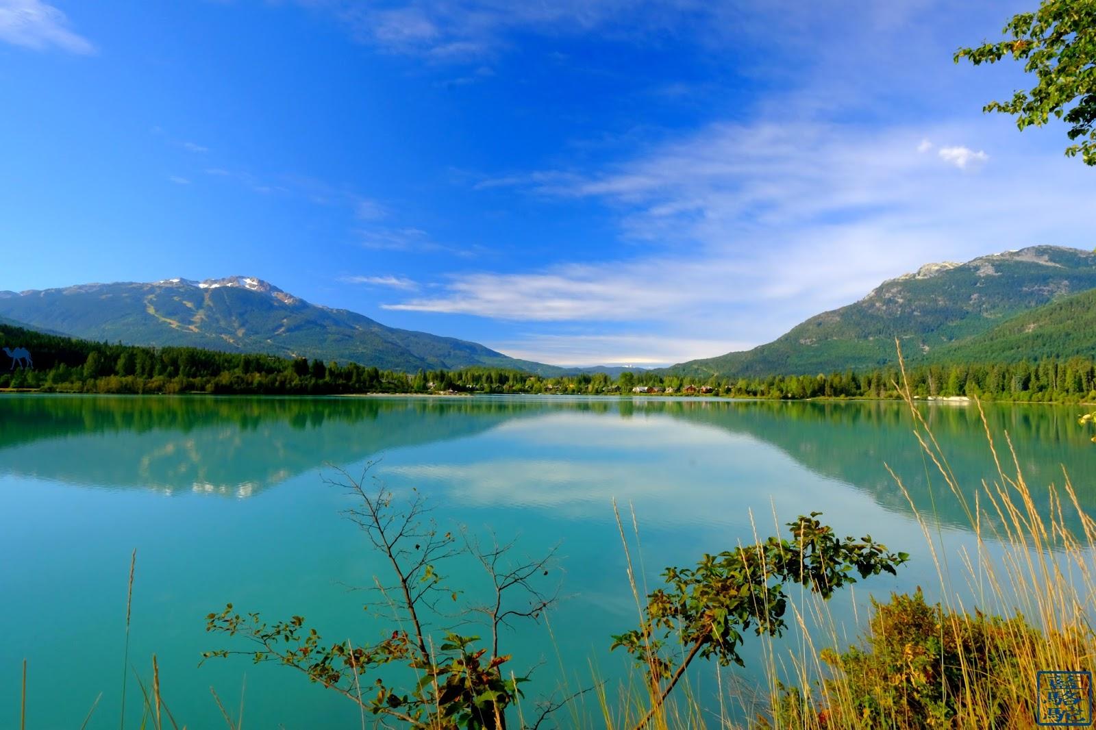 Le Chameau Bleu - Green Lake