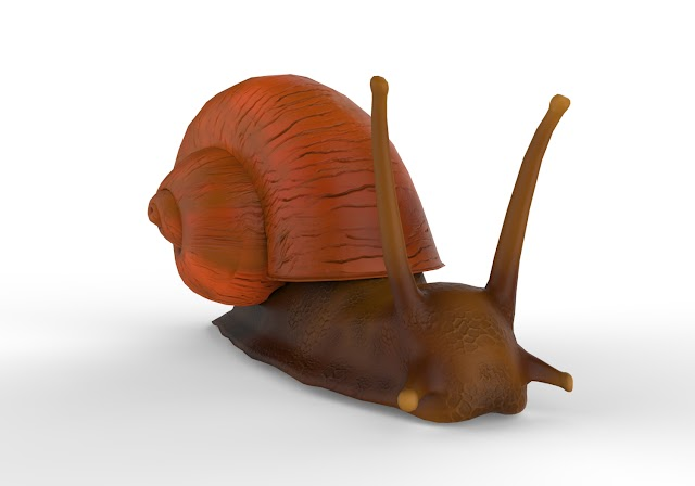 Snail 3d model free download obj,maya,low poly