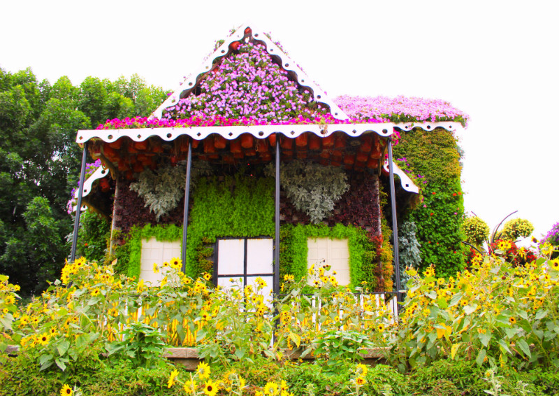 Floral House in Dubai Miracle Garden