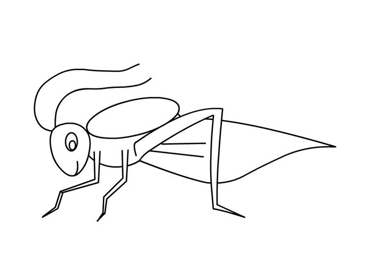 """Animal """" Cricket """" Printable Coloring For Drawing"""
