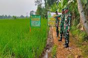 Kunjungi Petani, Dandim 0601/Pandeglang Ajak Petani Gunakan Pupuk Organik Bios 44