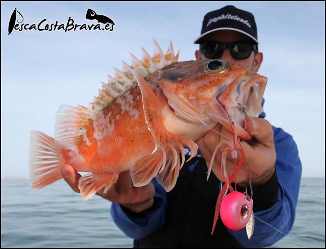 gallineta kanji risky tairis kabura pesca costa brava jjpescasport - PESCANDO con KABURA a gran PROFUNDIDAD