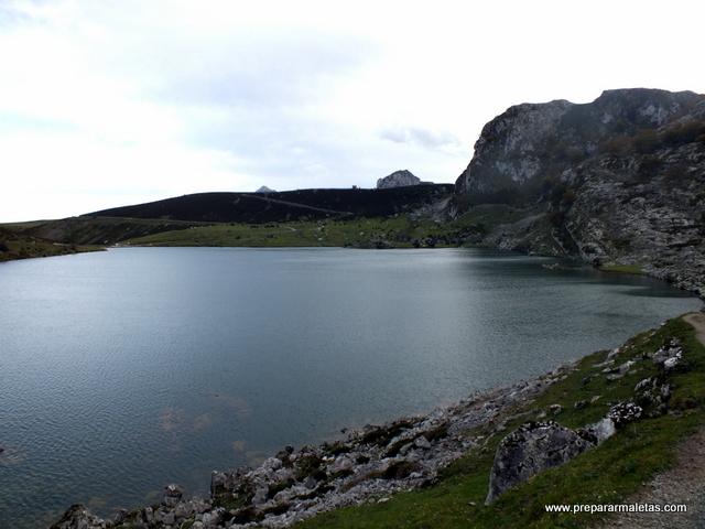 visitar los Picos de Europa