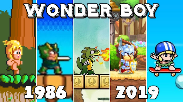 25IN1 WONDERBOY COLLECTION