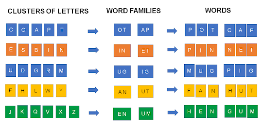 Introduction to Word Formation