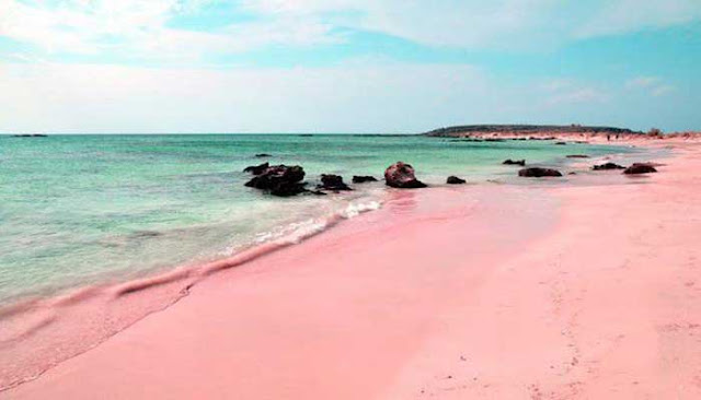 The pink sand beach in Indonesia