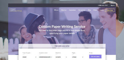 essayswriting review