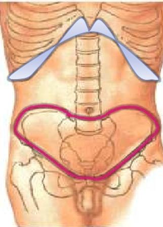 Anatomía Radiológica de Pelvis y Abdomen: ESTUDIO IMAGENOLÓGICO DEL ...