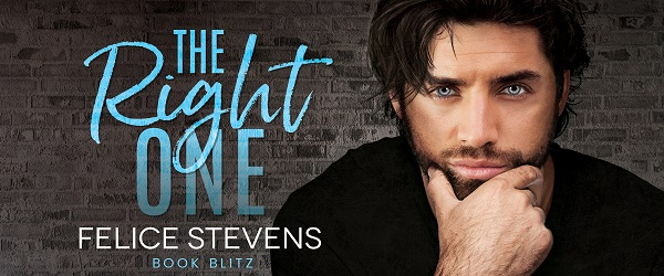 The Right One by Felice Stevens Book Blitz