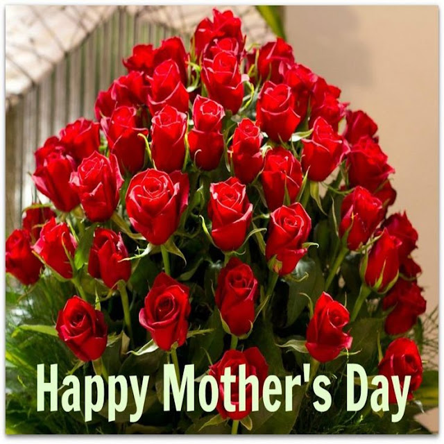 Best happy mother's day rose pictures images photos free download