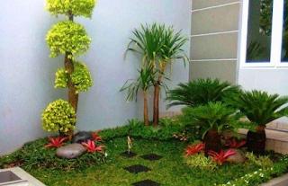 Cara membuat taman minimalis modern samping rumah
