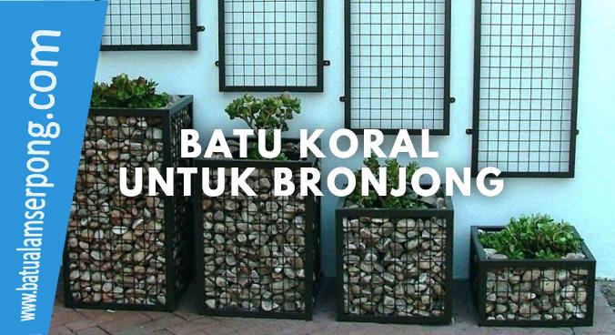 batu koral untuk bronjong