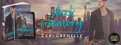 Stark Memory: Stupid, Awesome Love Book 3, Ceri Grenelle