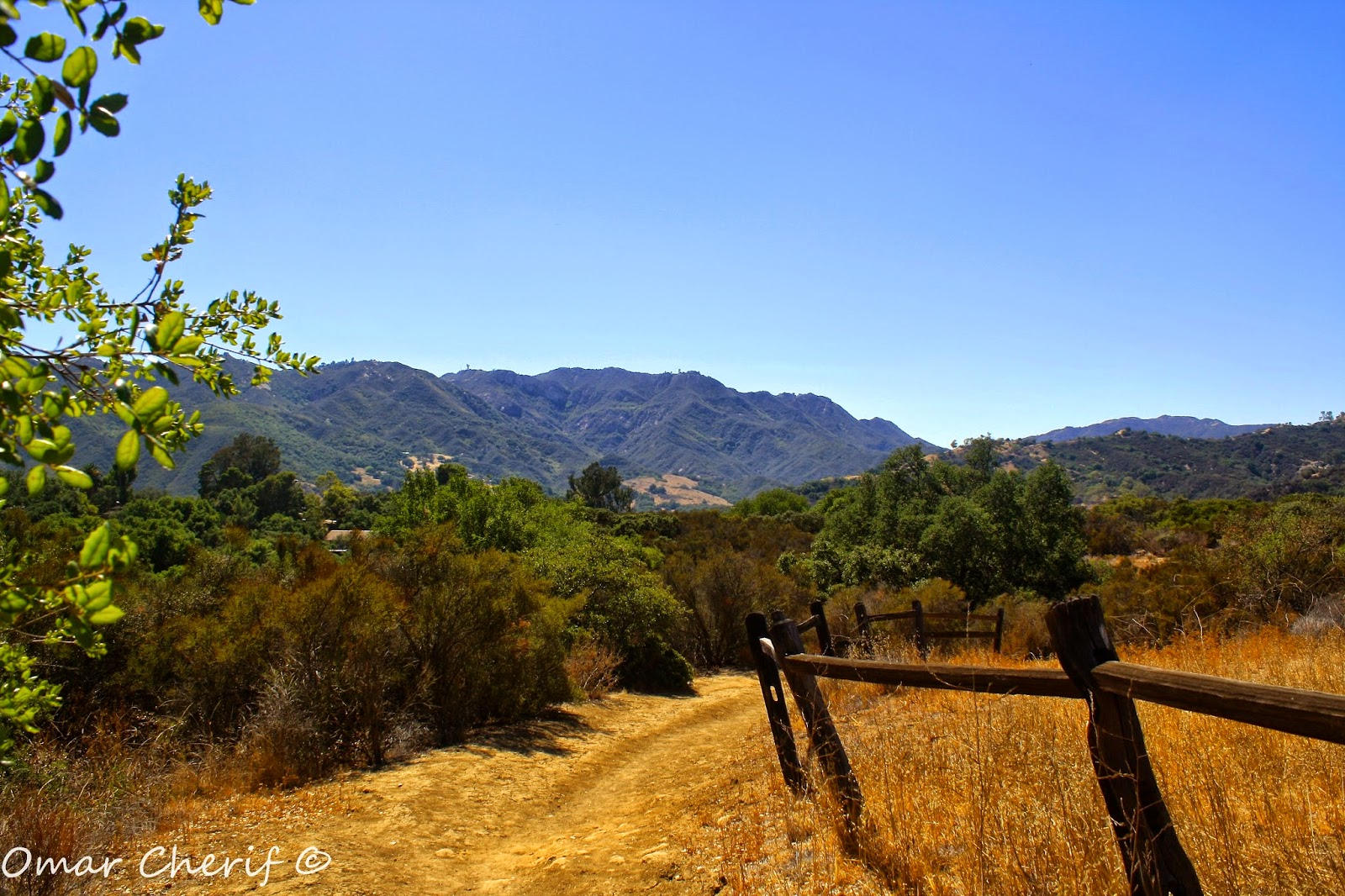 California, USA - 2014