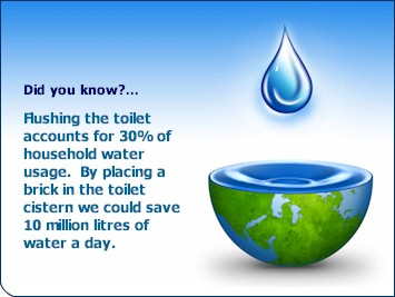 What is the importance of water in the human life?