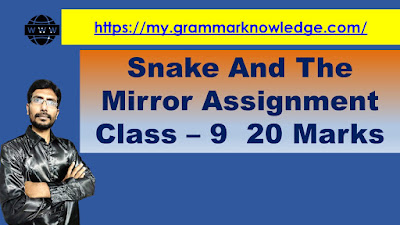 Snake And The Mirror Assignment Class – 9  20 Marks