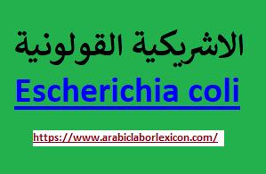 الاشريكية القولونية Escherichia coli
