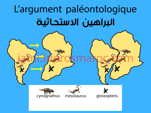L'argument paléontologique