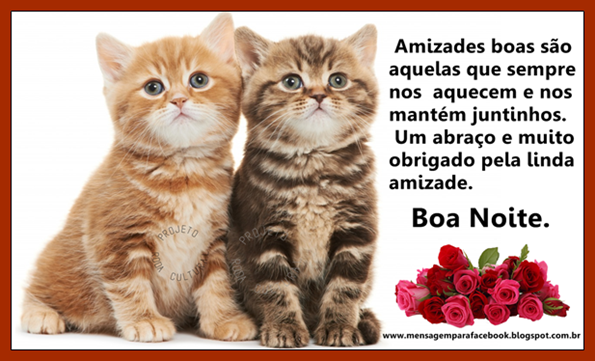 Extremamente Mensagens para Facebook: Amizade | Boa noite com gatinhos. ZX73