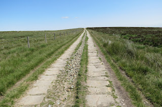 A broad, straight track stretching away into the distance across the moor.