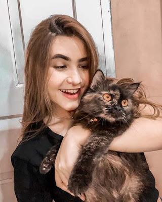 Moniq Crasivaya dan Kucing