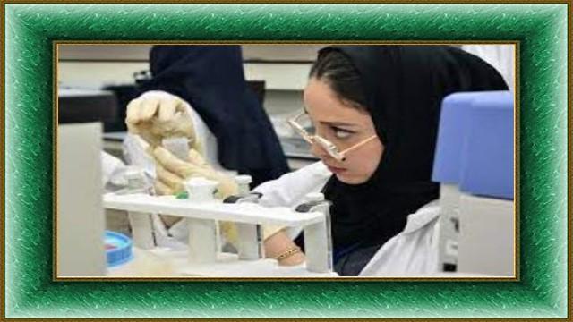 سعر تحليل وظائف الكبد في المختبر