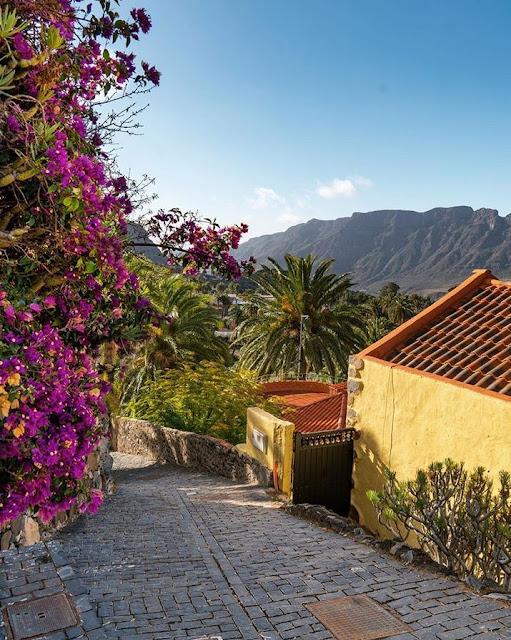 Wandern-Gran-Canaria | 10 Gründe für einen Wanderurlaub auf Gran Canaria! Wandern auf den Kanaren | Wanderungen auf den kanarischen Inseln 20
