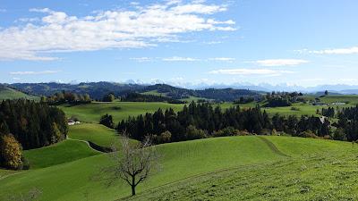 Blick bei Oberhorn