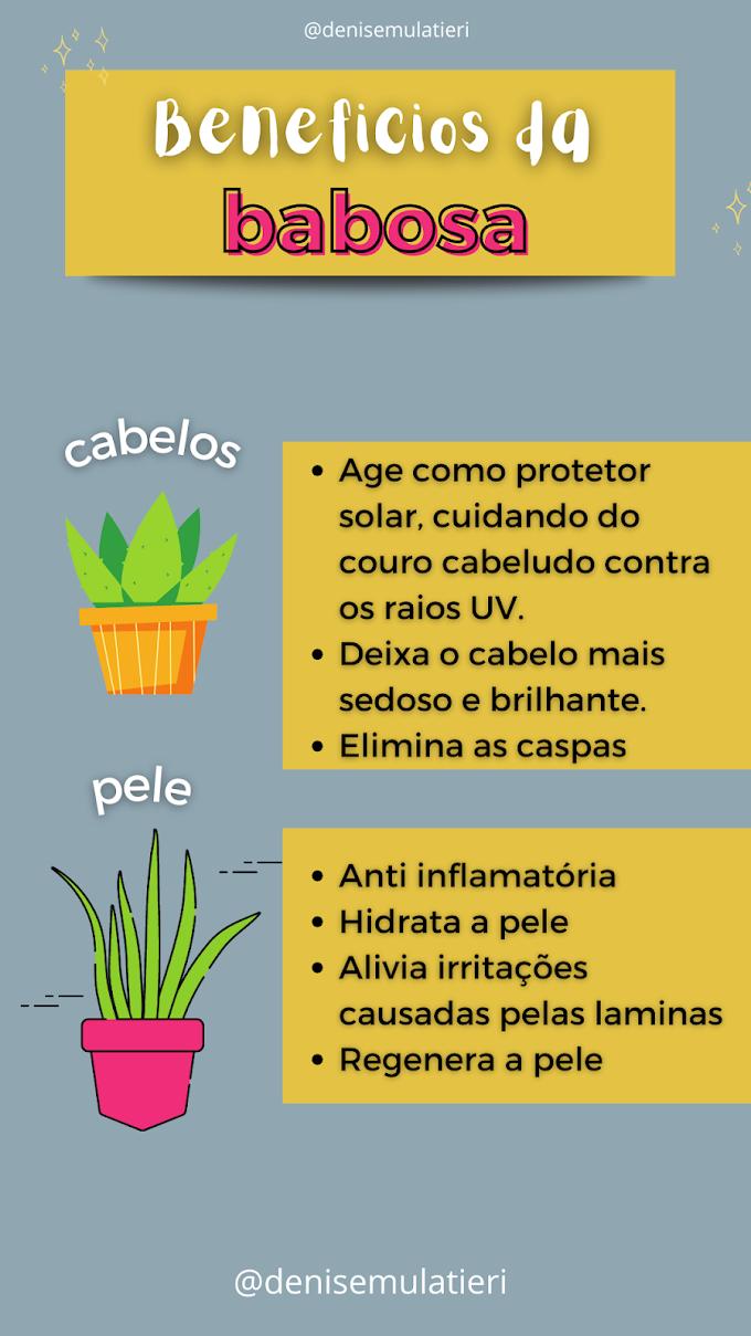 Benefícios da Babosa para o nosso Cabelo e Rosto